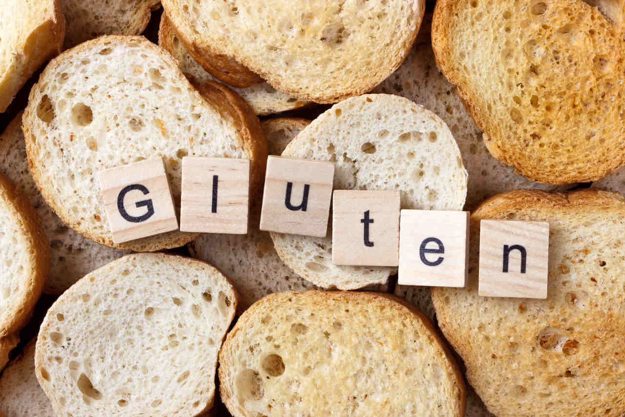 livro Manual do gluten